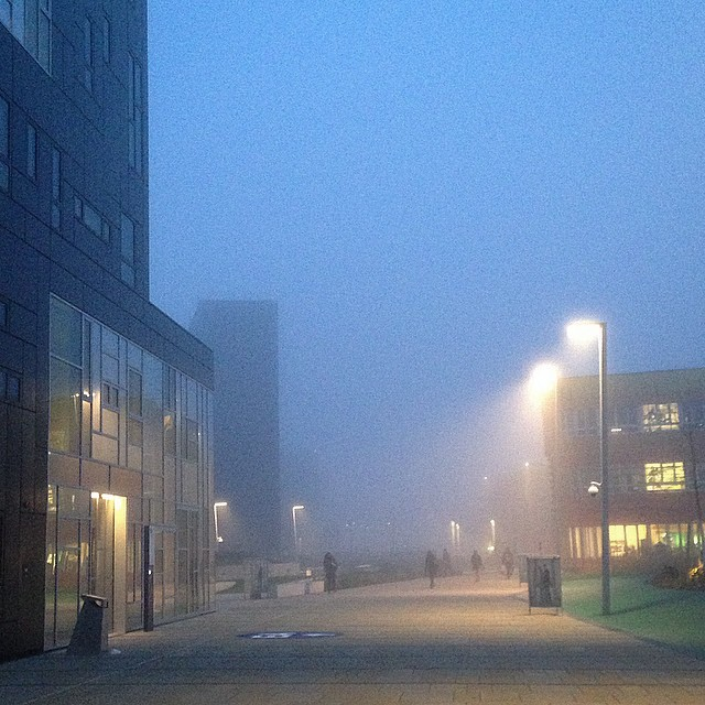 It's really #foggy today... #tuesday #morning #foggyday #cantseeanything @wuvienna #wuwien