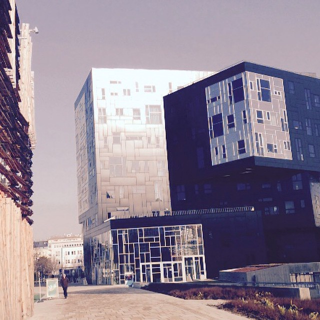 We wish you a good and sunny morning :) #WUWien #campusWu #ExecutiveAcademy #sunnymorning